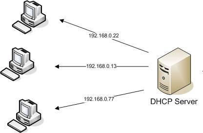 dhcp_server